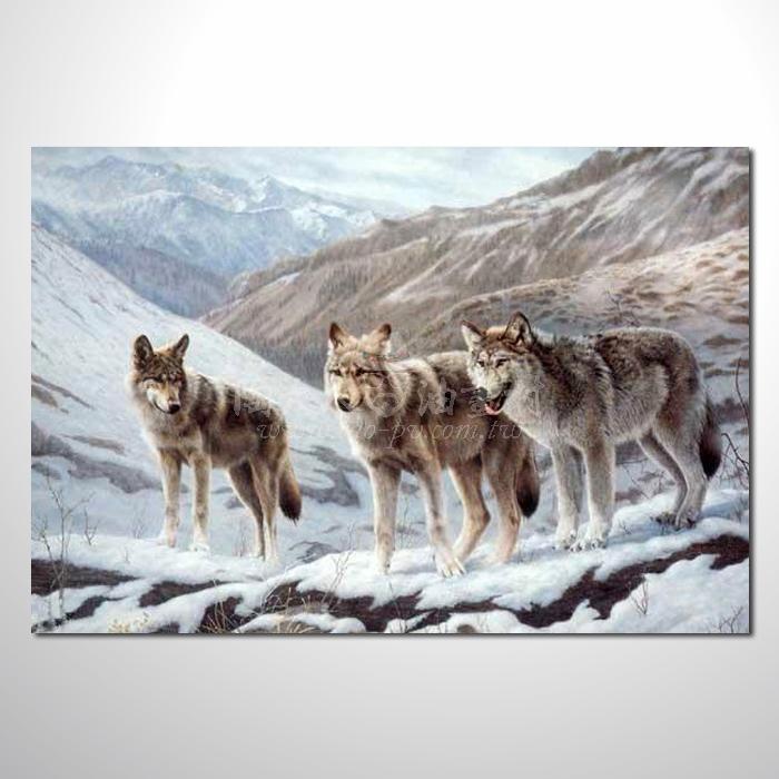 精緻動物 狼參考圖58 ☆本村的臨摹畫作皆是一筆一劃辛苦手繪而成 , 而非複印品。