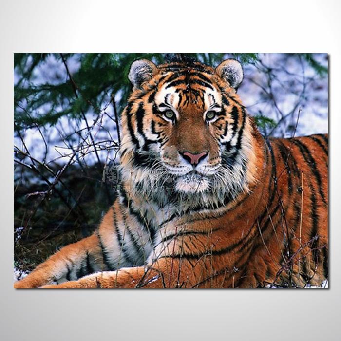 精緻動物 虎參考圖76 ☆本村提供客製化臨摹畫創作純手繪圖畫 , 歡迎各行業選購!