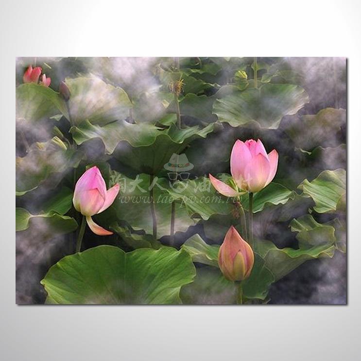 睡蓮荷花參考圖 28 純手繪 ☆希望在我們的油畫村裡能讓您陶然自得!